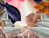 #124 | Collage illustration