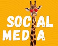social medi 2019