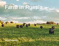 Farm product — Гусево