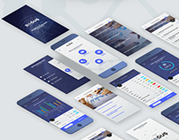 Doğuş Otomotiv Budget Planning App UI Design
