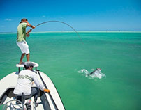 Three of the Best Fly Fishing Spots in Florida