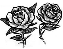 •• Roses ••