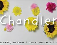 Chandler Birthday Show Banner