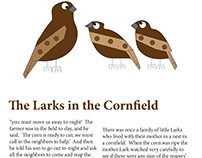 The Larks in the Cornfield Story Illustrations