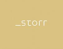 Storr Brand Identity