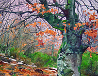 Trees in winter 2. Watercolour.