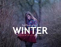 25 Winter & Travel Blogger Collection Lightroom Preset