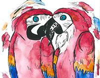 Illustrations animalières - Les oiseaux