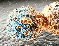 Newsweek Curing Cancer