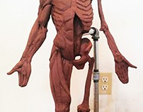 Human Anatomical Sculpture
