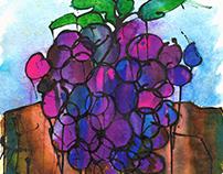 El color de las uvas.