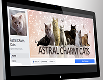 Astral Charm Cats facebook cover