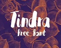 TINDRA FONT