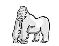 mountain silver back gorilla Endangered Wildlife Cartoo