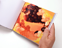 Photography   Fruit Book