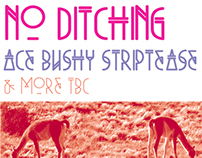 No Ditching poster for Plan B Books (2013)