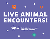 Live Animal Encounters! Branding