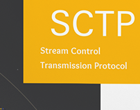 Interface Report - SCTP