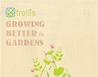 POSTCARD DESIGN for Trellis Scotland.