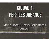 Ciudad 1: Perfiles Urbanos