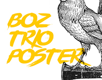 Boz Trio Band