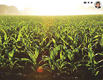 Agrisol (Precision Farming Management System)