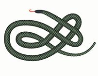 Snakebites Infographic
