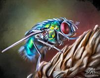 """Digital Fly"" Oil Style Painting by Wayne Flint"