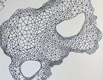 Algorithmic drawing