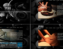Web: Panpuri Spa Consultancy website 2012