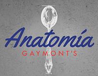 Anatomía Gaymont's