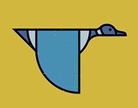British Birds (part4/4)