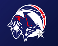 Washington Wizards logo concept