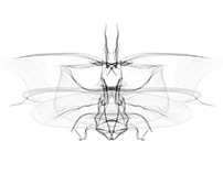 DIGITAL NATURE generative design / architectural theory