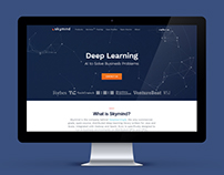 Deep Learning Platform for Enterprises