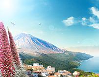 Flor del Teide