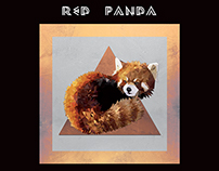 Red Panda ( Projet Perso )