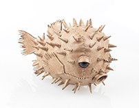 Leather Pufferfish