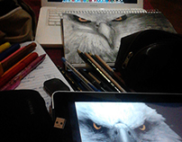 eagle, between charcoal and chalk