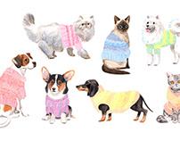 Pet Sweaters