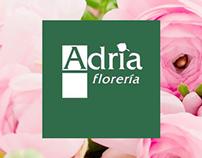 adriafloreria.com