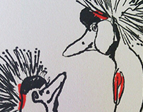 Ink Illustrations of Tropical birds