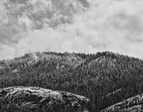 ➳ Venturing the Sierra ➳