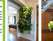 Green Wall Designs