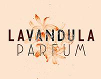 NovaDeco Typeface