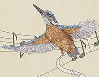 Birds mural (skinali)