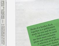 Birds of a Feather - Book Design