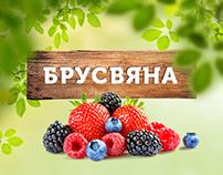 Landing Page — Brusvyana