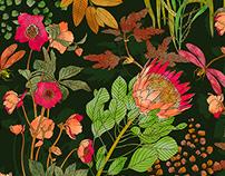 Wild Botanics