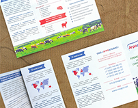 Booklet of cows